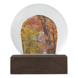 Orange and Yellow Fall Trees Autumn Photography Snow Globe
