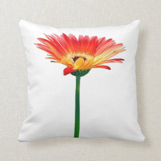 Orange and Yellow Gerbera Daisy Cushion