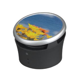 Orange And Yellow Namaqualand Daisies Bluetooth Speaker