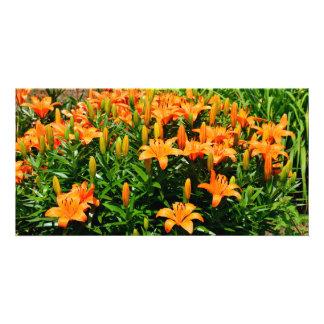 Orange Asian LIllies Photo Card