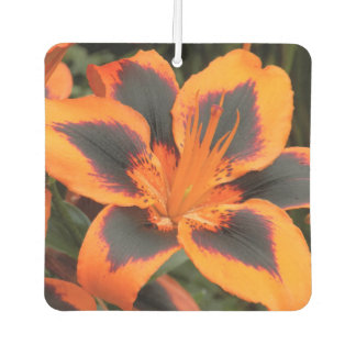 Orange Asiatic Lily Floral Car Air Freshener
