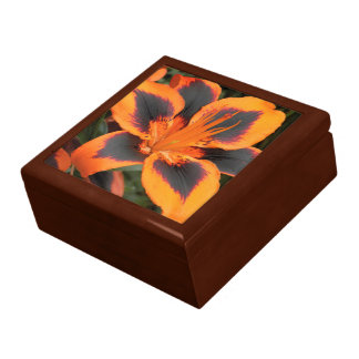 Orange Asiatic Lily Floral Large Square Gift Box