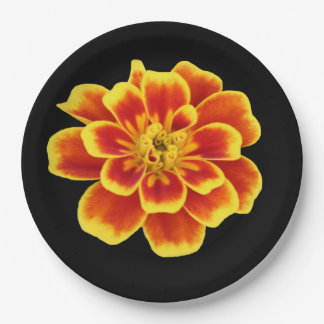 Orange Autumn Flower Rustic Fall Wedding Floral 9 Inch Paper Plate