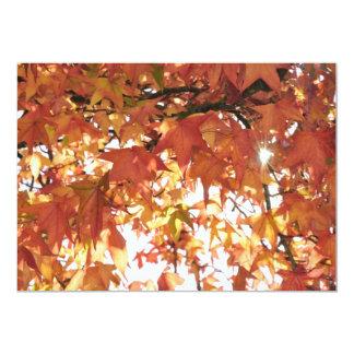 Orange autumn leafs with hard sun invitations