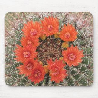 Orange barrel cactus blooms mouse pad