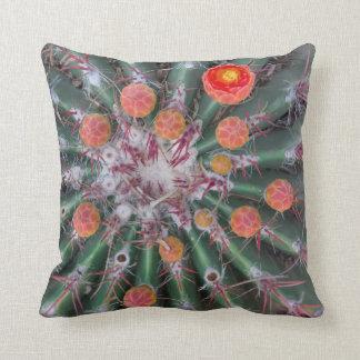Orange Barrel Cactus Pillow