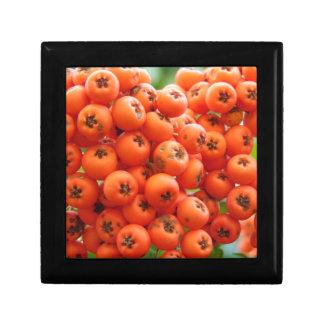 Orange Berries Gift Box