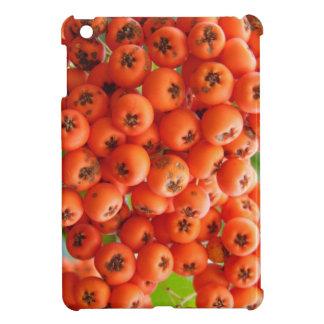 Orange Berries iPad Mini Case