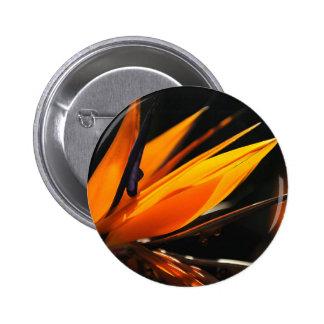 Orange Bird of Paradise Strelitzia 6 Cm Round Badge