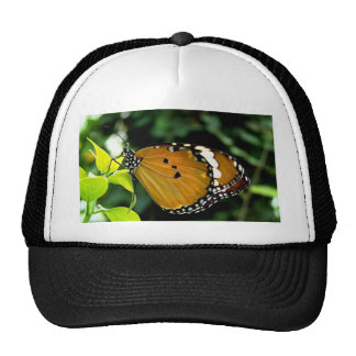 Orange, Black and White Butterfly on Leaf Mesh Hats
