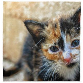 Orange Black and White Kitten Napkin