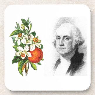 orange blossom GW Coasters