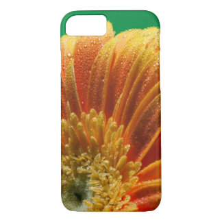 Orange Blossom with colorful petals iPhone 8/7 Case