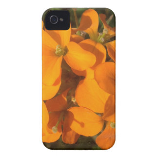 Orange Burst iPhone 4 Case-Mate Case
