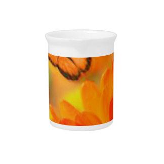 Orange Butterflies Pitcher