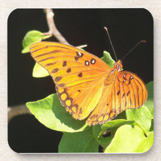 Orange Butterfly Beverage Coaster