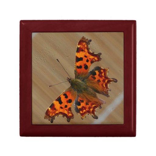 Orange Butterfly Gift Box