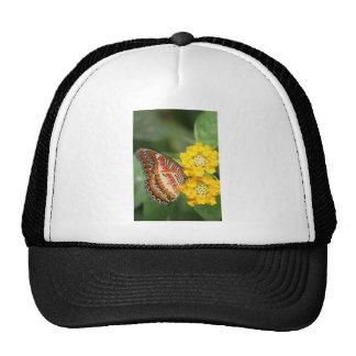 orange butterfly mesh hats