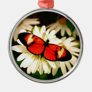Orange Butterfly Silver-Colored Round Decoration