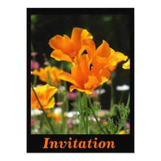 Orange California Poppies 6.5x8.75 Paper Invitation Card