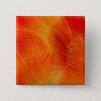Orange Camelot Macaw Feather Abstract 15 Cm Square Badge