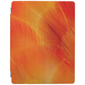 Orange Camelot Macaw Feather Abstract iPad Cover