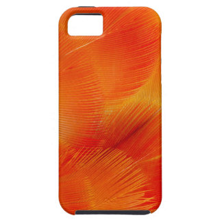 Orange Camelot Macaw Feather Abstract iPhone 5 Cover