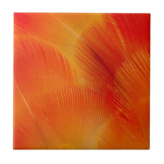 Orange Camelot Macaw Feather Abstract Small Square Tile