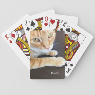 Orange cat closeup playing cards
