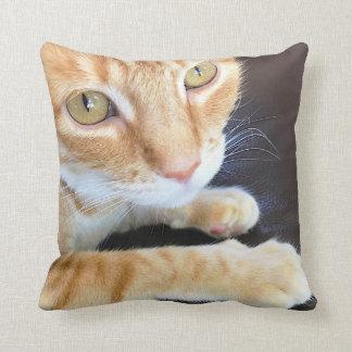 Orange cat closeup throw pillow
