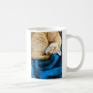 Orange cat curled up on blanket coffee mug