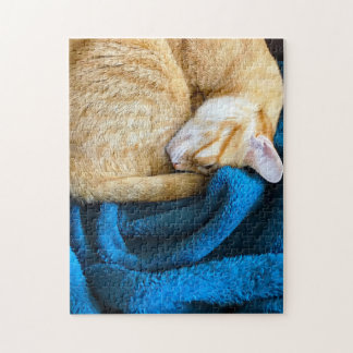 Orange cat curled up on blanket jigsaw puzzle