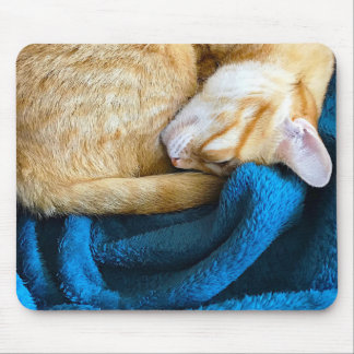 Orange cat curled up on blanket mouse pad
