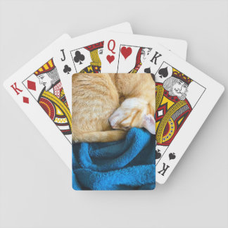 Orange cat curled up on blanket playing cards