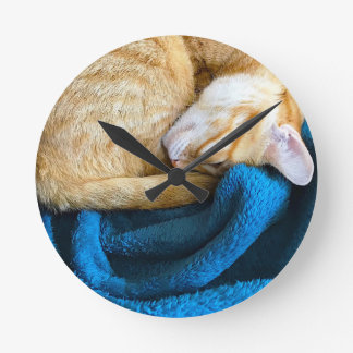 Orange cat curled up on blanket round clock