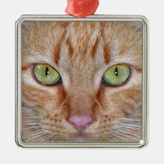Orange Cat Eyes Silver-Colored Square Decoration