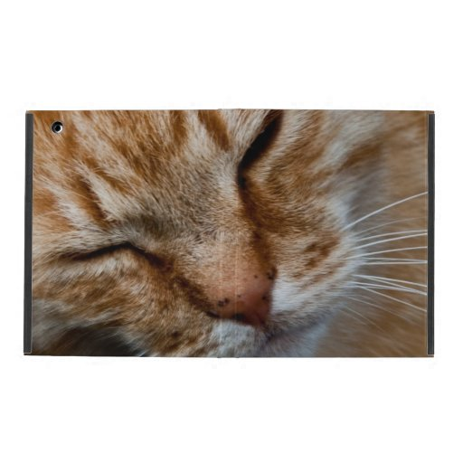 Orange cat face iPad folio cases