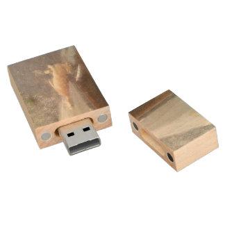 Orange Cat Wood USB 2.0 Flash Drive
