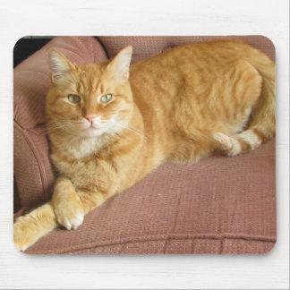 orange cat mouse pad