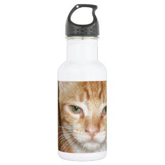 Orange Cat 532 Ml Water Bottle