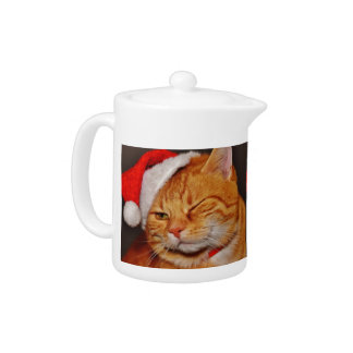 Orange cat - Santa claus cat - merry christmas