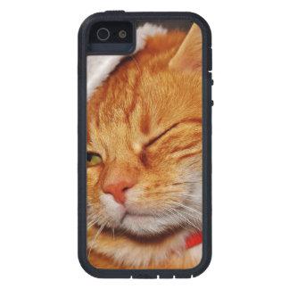 Orange cat - Santa claus cat - merry christmas Case For iPhone 5