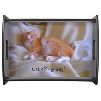 Orange Cat Serving Tray