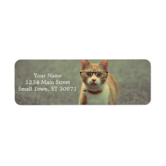 Orange cat with glasses return address label