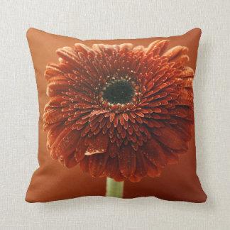 Orange chrysanthemum cushion