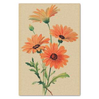 "Orange Chrysanthemums 10"" X 15"" Tissue Paper"