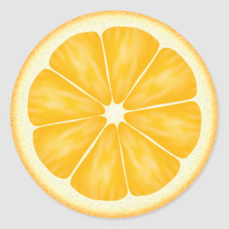 Orange Citrus Fruit Round Sticker