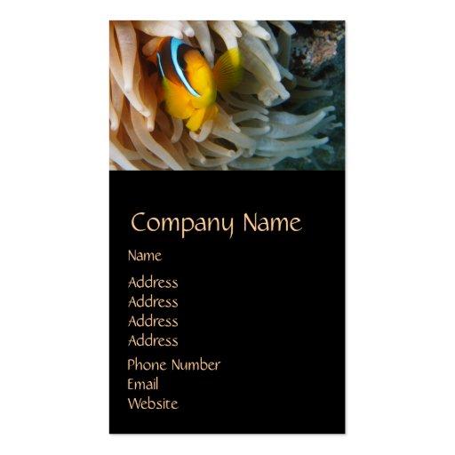 Orange Clown Fish Business Card Templates