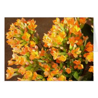 Orange clusters 2 card