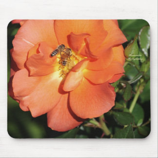 Orange cream rose with bees mousepad